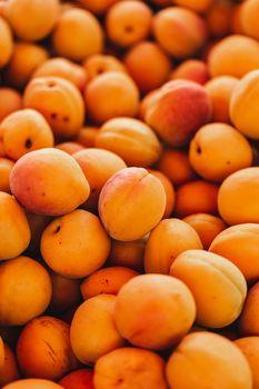 Photo free food, apricot, many