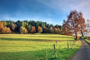 Фото бесплатно осень, поле, дорога