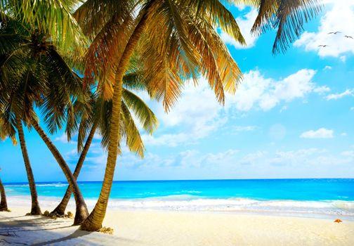 Обои на телефон море, пляж