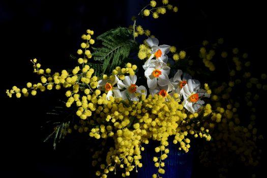 Фото бесплатно ваза, цветы, мимоза