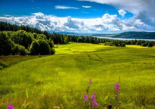 Фото бесплатно Норвегия, Рингсакер, долина