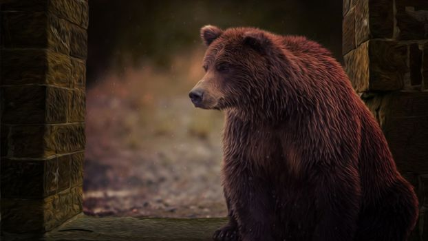 Photo free bear, painting, artwork
