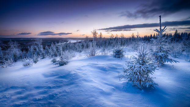 Заставки Финляндия,рассвет,восход солнца,синий,зима,снег,горы,деревья,сугробы,ель,ели,природа