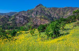 Фото бесплатно парки калифорнии, штаты сша, горы