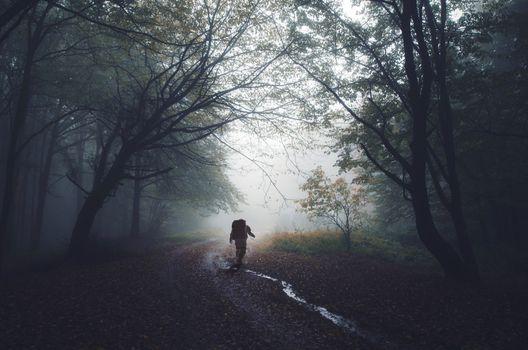 Заставки путь, осень, астронавт