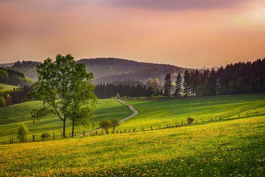 Фото бесплатно закат, лето, дорога