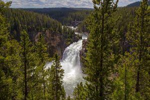Фото бесплатно водопад, сосны, пейзаж