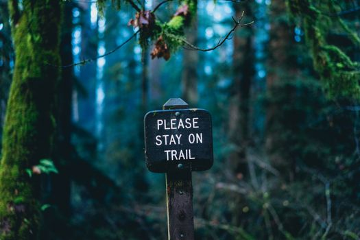 Please stay on trail · free photo