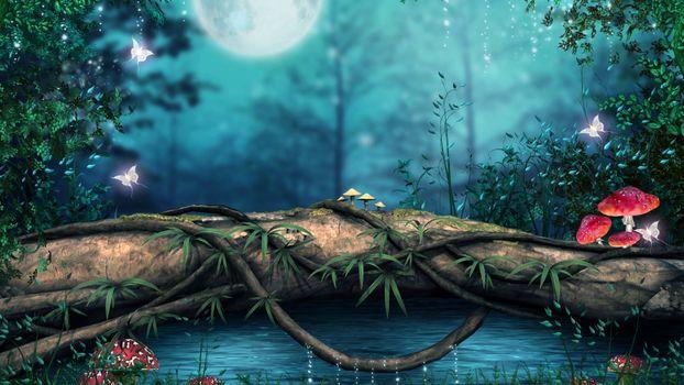 Photo free fantasy forest, mushrooms, moon