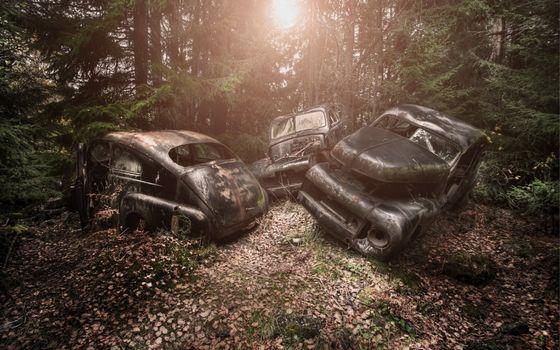 Фото бесплатно свалка автомобилей, лес, деревья
