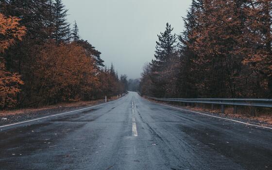 Фото бесплатно дождь, мокрый асфальт, погода