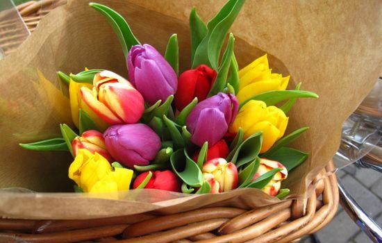Фото бесплатно букет, бумага, цветы