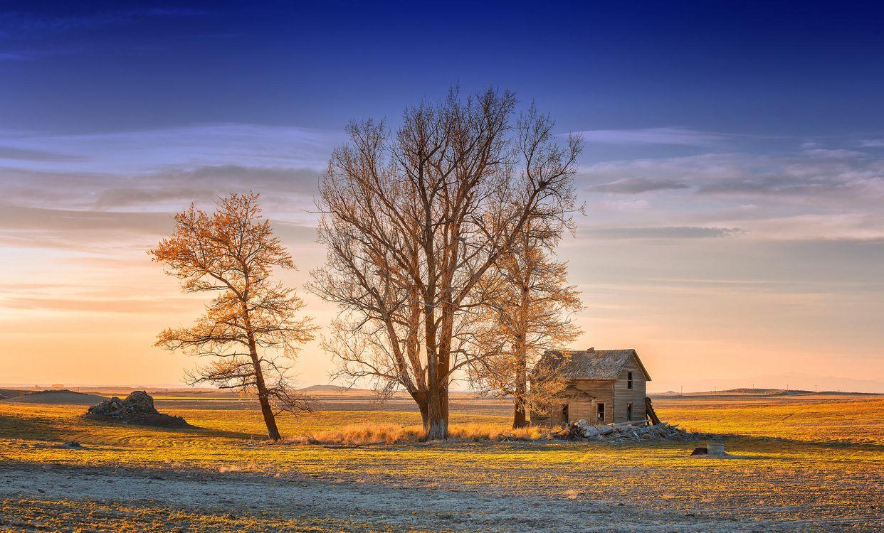 Фото бесплатно закат, поле, заброшенный дом, деревья, небо, пейзаж, пейзажи - скачать на рабочий стол