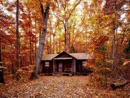 Photo free scenic, colorful, foliage