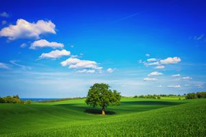 Фото бесплатно поле, холмы, небо