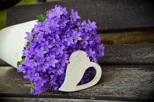 Photo free petal, floral greeting, violet