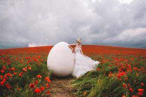 Обои девушка, модель, поле, цветы, маки, яйцо