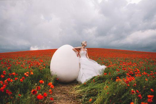 Фото бесплатно девушка, модель, поле