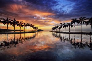 Photo free reflection, sunset, palms