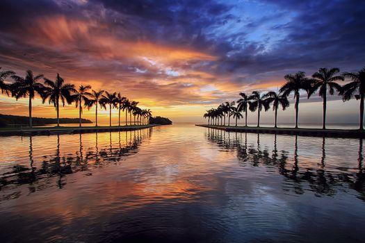 Фото бесплатно Miami, Майами, Флорида, закат, сумерки, море, океан, небо, пальмы, отражение, пейзаж