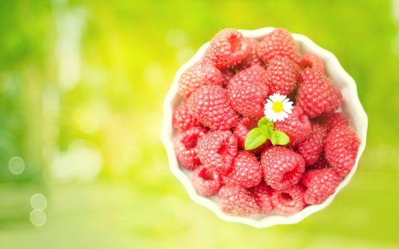 Фото бесплатно размытый фон, ягоды, чаша