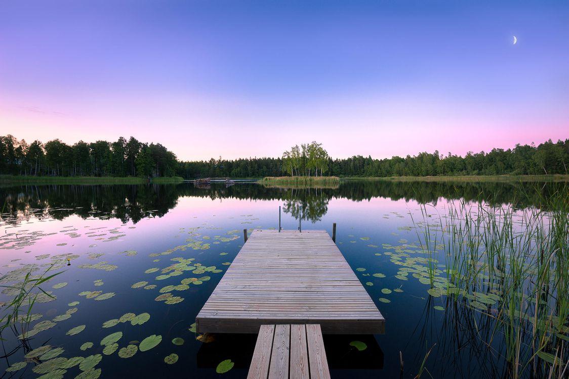 Фото бесплатно закат, озеро, мостик, причал, лес, деревья, пейзаж, пейзажи