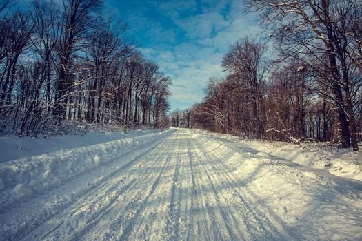 Заставки зима, дорога, деревья