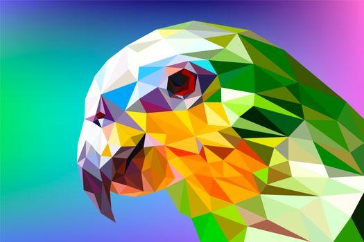 Заставки попугай, полигона, аспекты