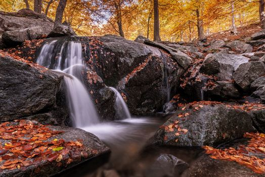 Free Autumn, Waterfall best photos