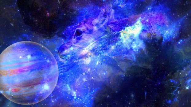 Photo free Digital Universe, galaxy, deer