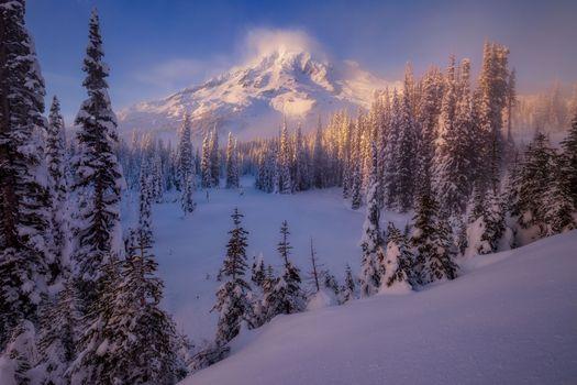 Photo free Mount Rainier National Park, winter, lake