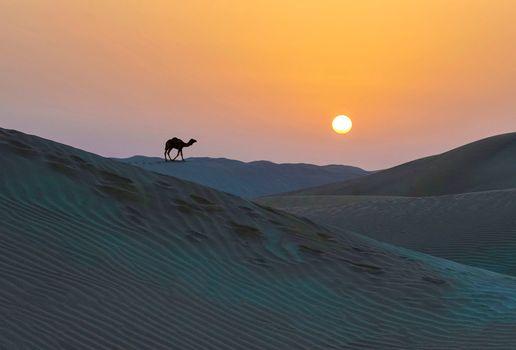 Photo free Kara-Kum desert, sand, sunset