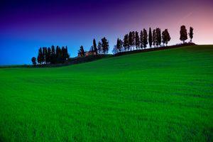 Фото бесплатно Tuscany, трава, силуэт