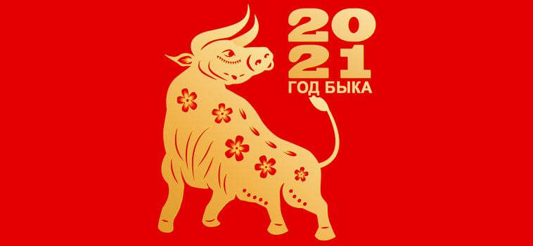 Photo free year of bull, New Year picture, New Year 2021