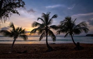 Бесплатные фото закат,море,берег,пальмы,тропики,пляж,пейзаж