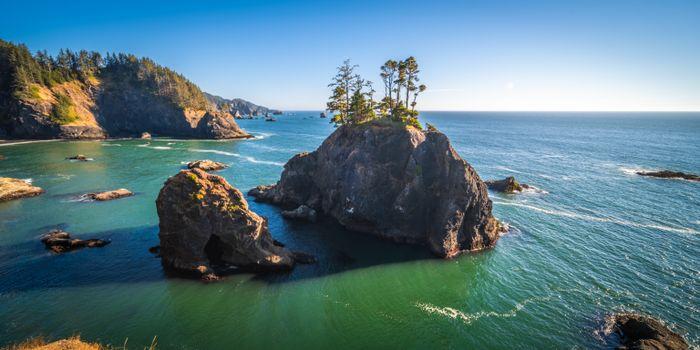 Фото бесплатно природа, США, скакать