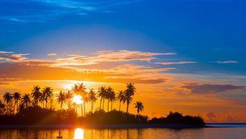 Бесплатные фото тропики, море, пальмы, закат