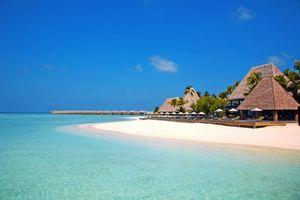 Бесплатные фото Мальдивы,море,остров,пляж,пальмы,отдых,тропики