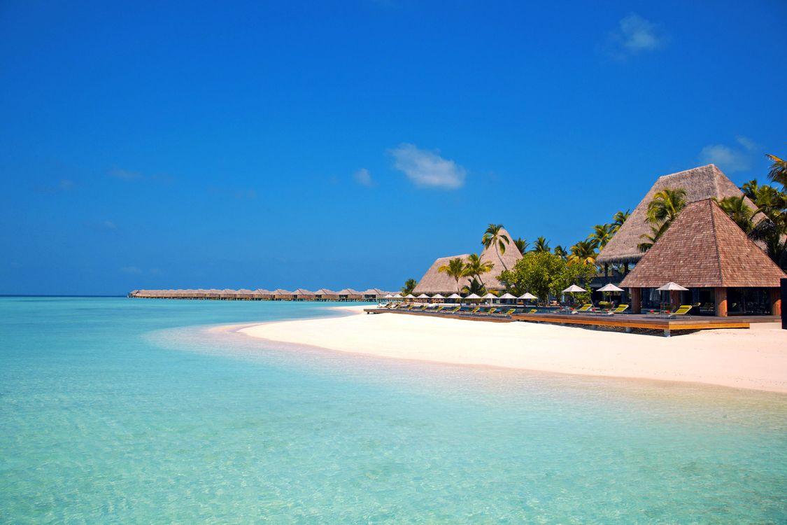 Фото бесплатно пальмы, Мальдивы, бунгало - на рабочий стол