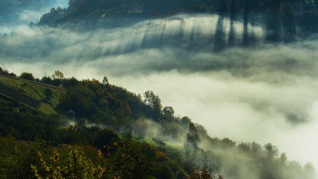Фото бесплатно Украина, Закарпатская область, туман