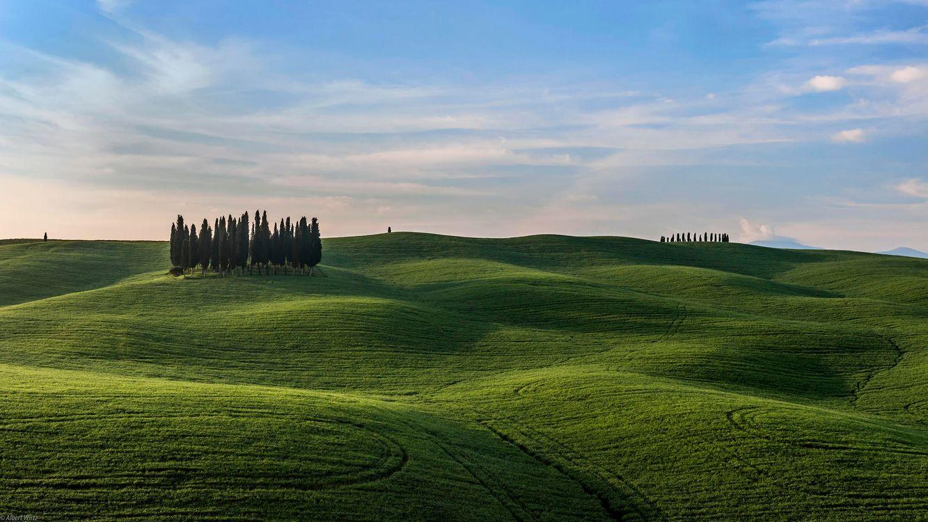 Фото бесплатно Италия, Тоскана, поля, холмы, деревья, пейзаж, пейзажи