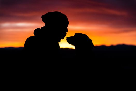 Photo free silhouettes, person, dog