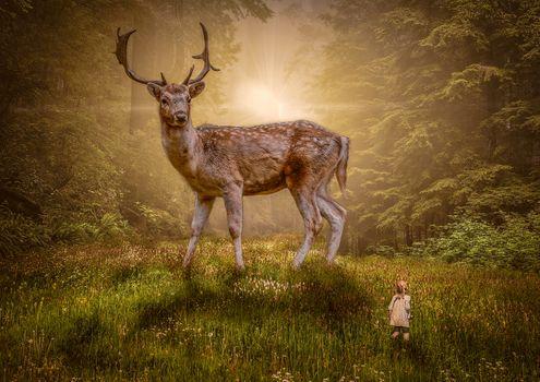 Заставки лес,поляна,олень,гигантский олень,девочка,ребёнок,закат,восход,фантазия,фантастика