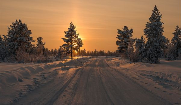 The most beautiful pictures of the sunset, winter, snow