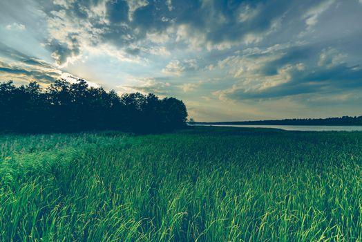 Фото бесплатно ветер, отражение, поле
