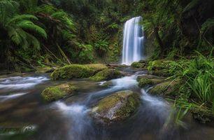 Фото бесплатно водопад, лес, река