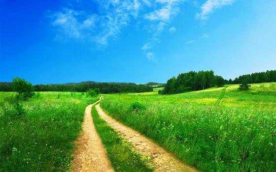 Photo free agriculture, road, countryside