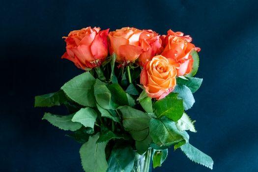 Фото бесплатно букет, флора, листья