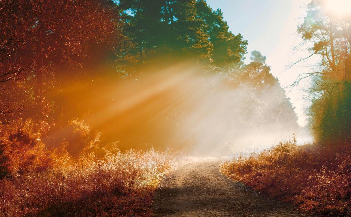 Фото бесплатно дорога, грязь, солнечный луч - на рабочий стол