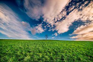 Бесплатные фото закат,поле,трава,небо,облака,дерево,пейзаж